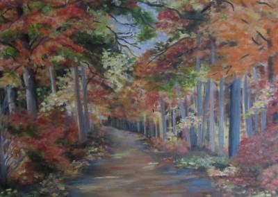 L'automne au Parc Odell (Marie-Paule P.)